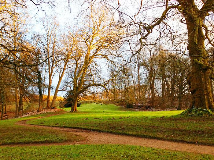 Herbslticher Morgen im Hasenpark, die Bäume haben keine Blätter