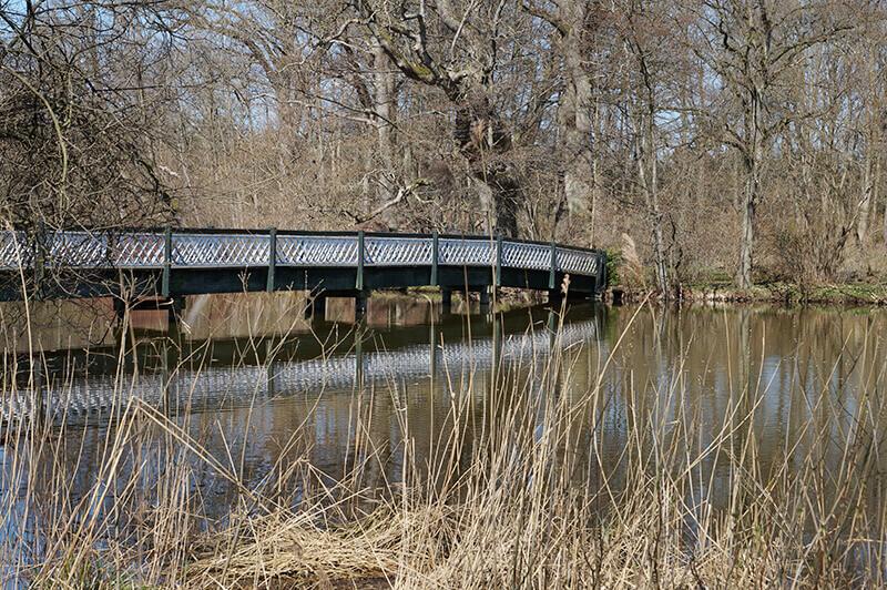 Herbstlicher Wald mit der Hasenbrück vom seitlichen Ufer aus