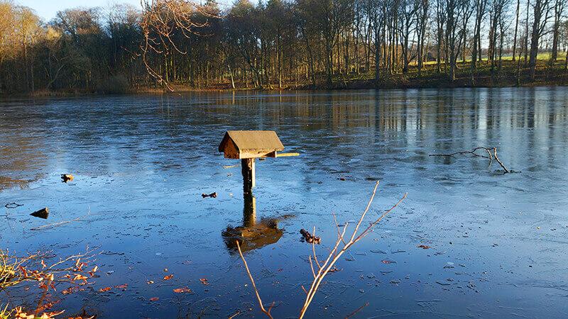 Ein Vogelhaus auf dem zugefrorenen Hasensee