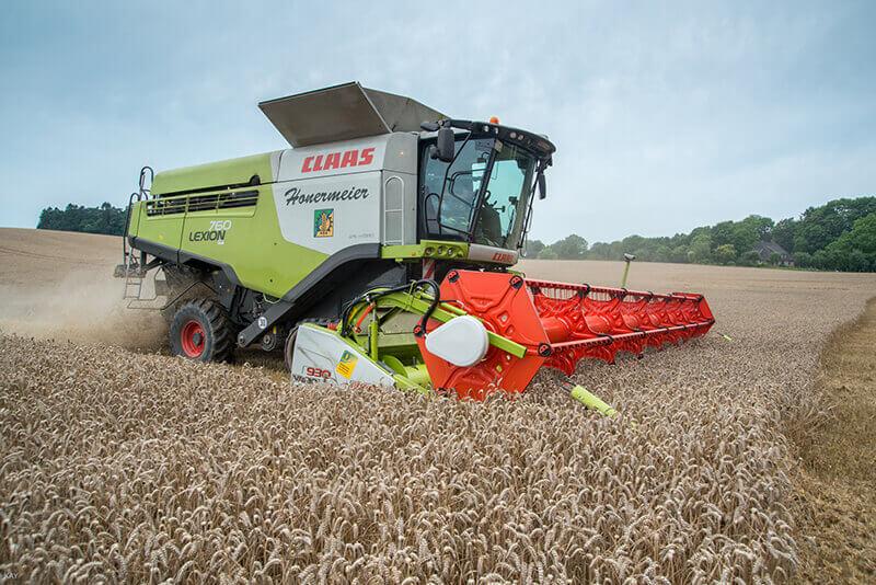 Eine Landmaschine erntet den reifen Weizen vom Feld
